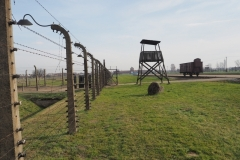 Selektionsrampe Birkenau